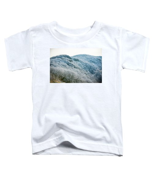Mountainside Hoarfrost Toddler T-Shirt