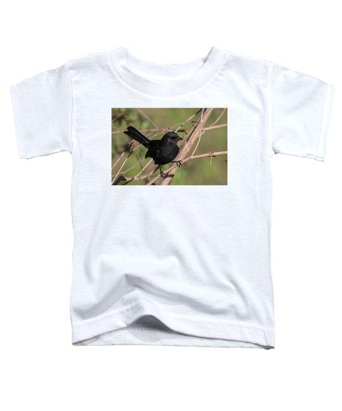 Northern Black Flycatcher Toddler T-Shirt