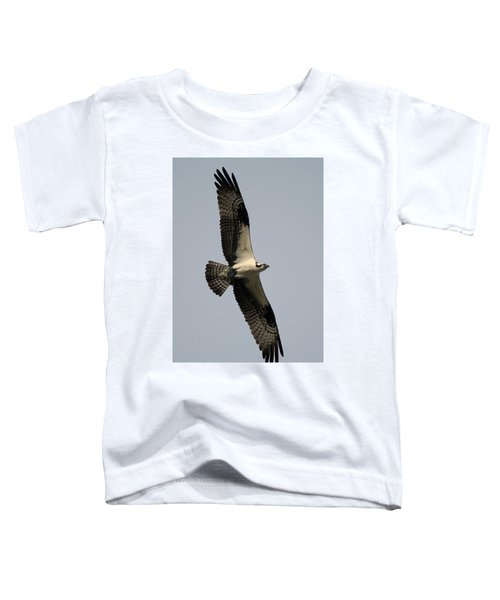 Osprey With Fish Toddler T-Shirt