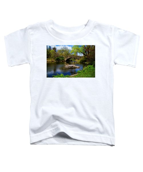 Park Bridge2 Toddler T-Shirt