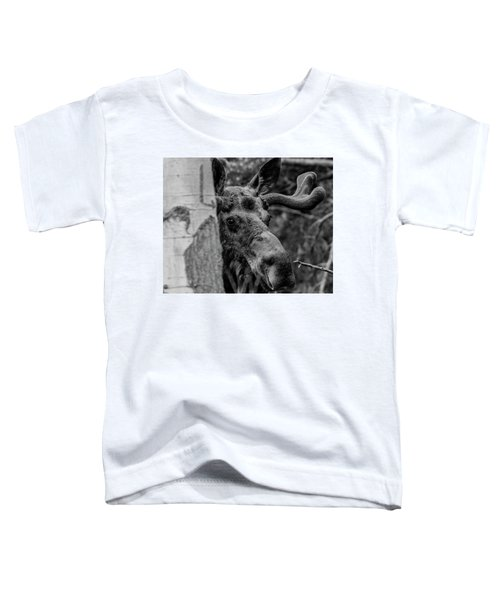 Peek-a-moose Toddler T-Shirt