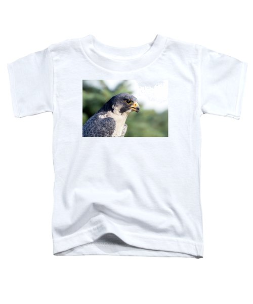 Peregrine Falcon Toddler T-Shirt