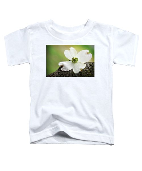Raining Sunshine Toddler T-Shirt