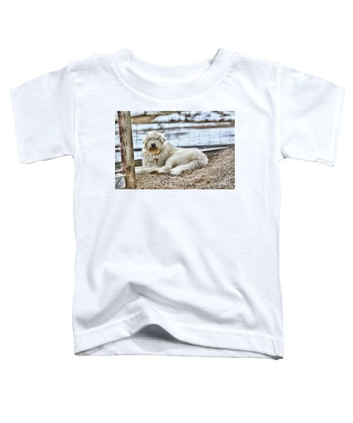 Ranch Hand Toddler T-Shirt