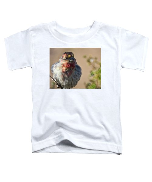Rare Multicolored Male House Finch Toddler T-Shirt