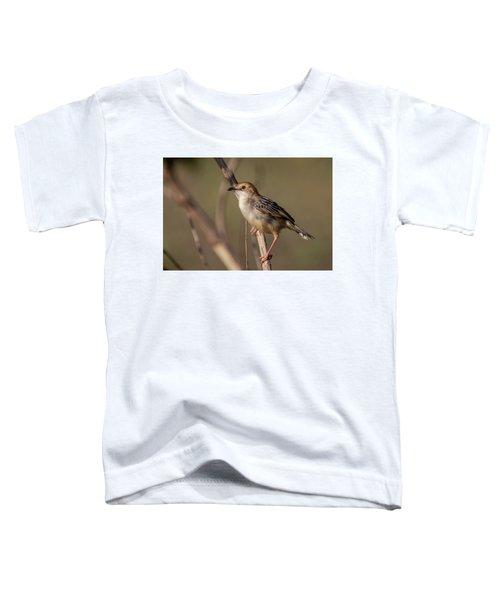 Rattling Cisticola Toddler T-Shirt