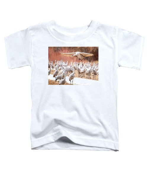 Ready Or Not, Here I Come -- Sandhill Cranes Toddler T-Shirt