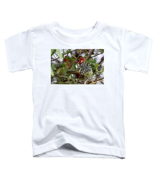 Red-and-yellow Barbet Toddler T-Shirt