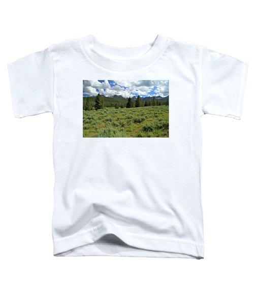 Sawtooth Range Crooked Creek Toddler T-Shirt