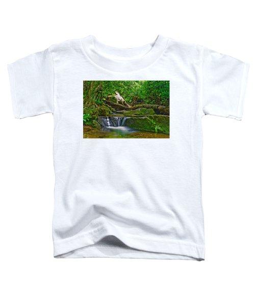 Sims Creek Waterfall Toddler T-Shirt