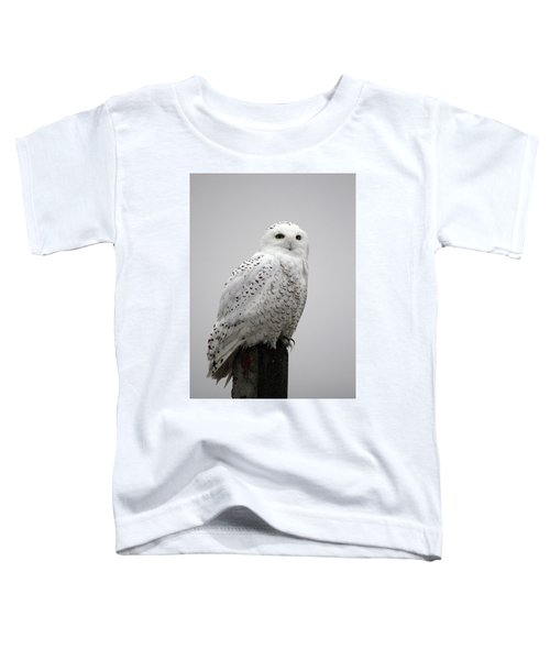 Snowy Owl In Fog Toddler T-Shirt