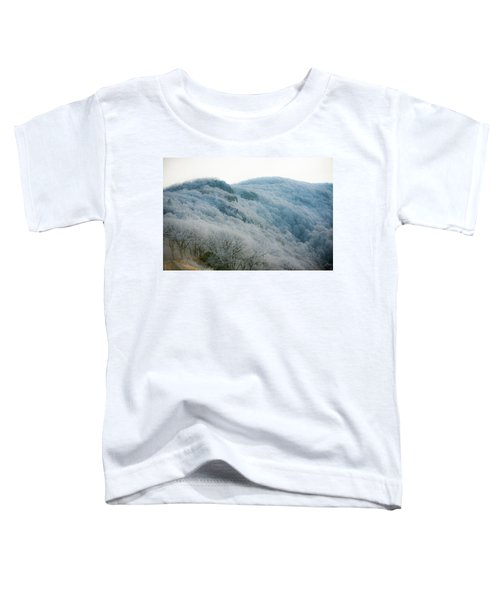 Soft Hoarfrost Toddler T-Shirt
