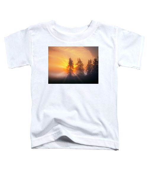 Spruce Trees In The Morning Toddler T-Shirt