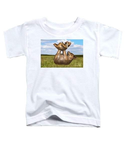 Teaching A Pig To Fly - Mother Pig In Grassy Field Holds Up Baby Pig With Flying Helmet To Teach It  Toddler T-Shirt
