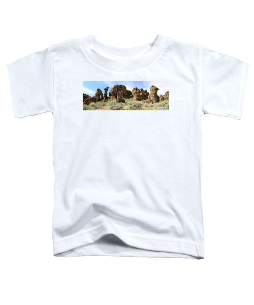 Arches Hoodoos And Castles The Big Picture Little City Of Rocks Toddler T-Shirt