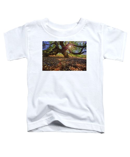 The Old Oak Toddler T-Shirt