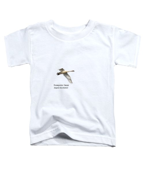 Trumpeter Swan Isolated 2018-2 Toddler T-Shirt