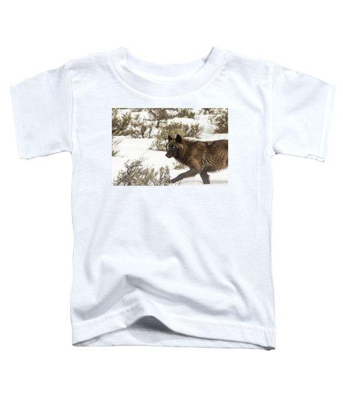 W5 Toddler T-Shirt