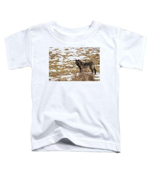 W59 Toddler T-Shirt