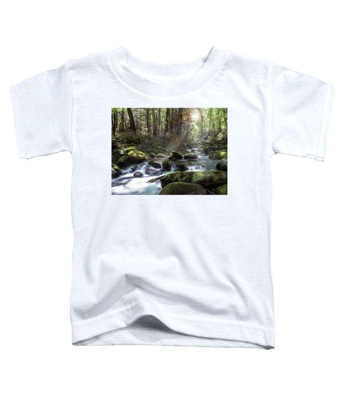 Woodland Falls Toddler T-Shirt