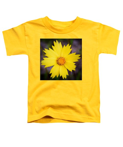 A Little Sunshine Toddler T-Shirt