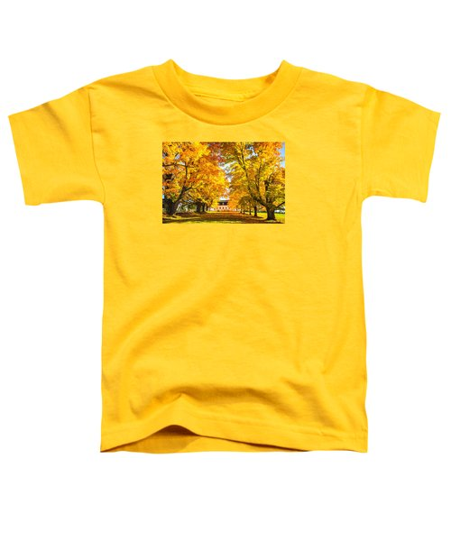 Autumn Gold IIi Toddler T-Shirt