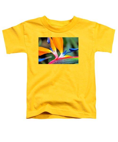Bird Of Paradise After The Rain Toddler T-Shirt