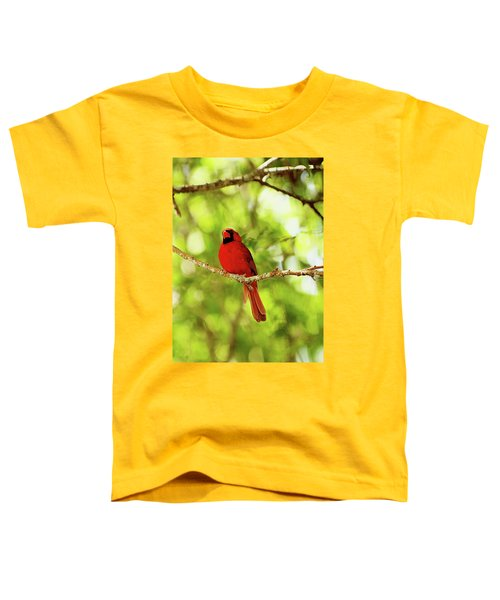 Cardinal Stare Toddler T-Shirt