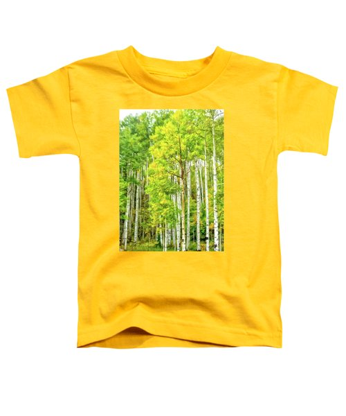 Colorado Fall Foliage Toddler T-Shirt