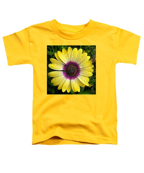 Dew Dropped Daisy Toddler T-Shirt