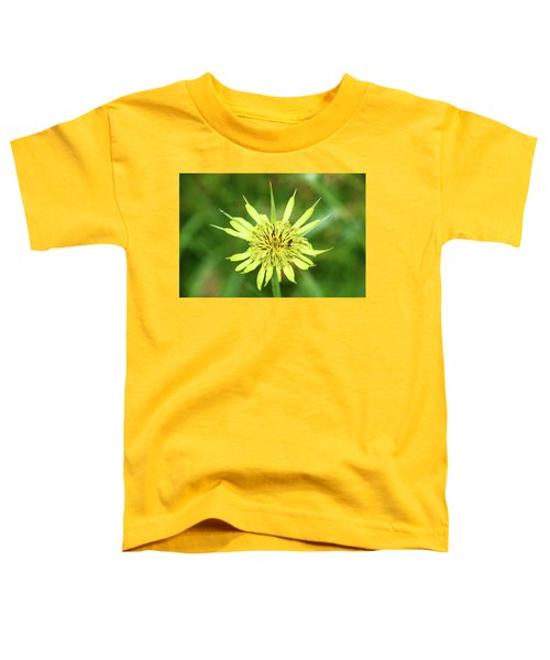 Fll-4 Toddler T-Shirt