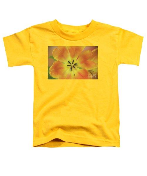 Gold Tulip Explosion Toddler T-Shirt