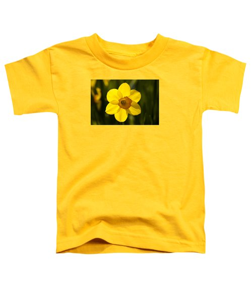 Projecting The Sun Toddler T-Shirt