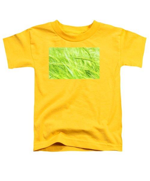 Summer Barley. Toddler T-Shirt