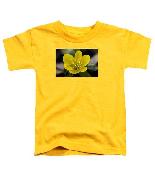 Winter Aconite Toddler T-Shirt