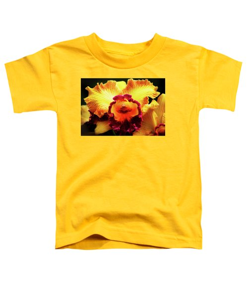 Yellow-purple Orchid Toddler T-Shirt