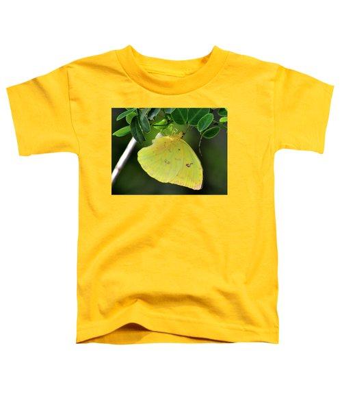 Yellow Sulfur Toddler T-Shirt