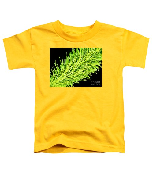 C016/0065 Toddler T-Shirt
