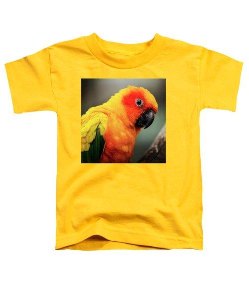 Close Up Of A Sun Conure Parrot. Toddler T-Shirt