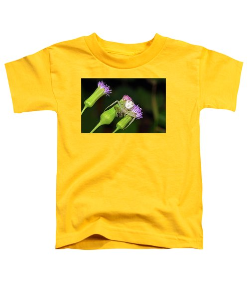 Crab Spider With Bee Toddler T-Shirt