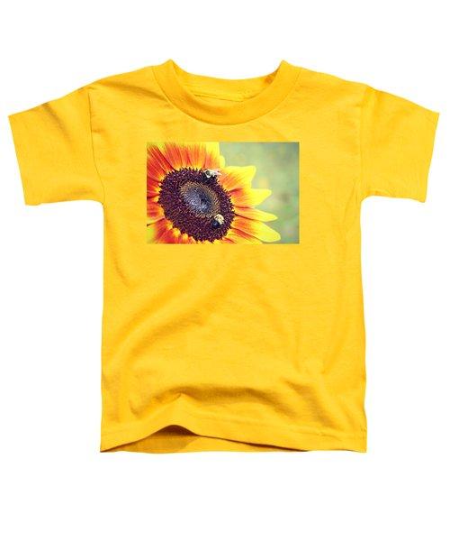 Painted Sun Toddler T-Shirt