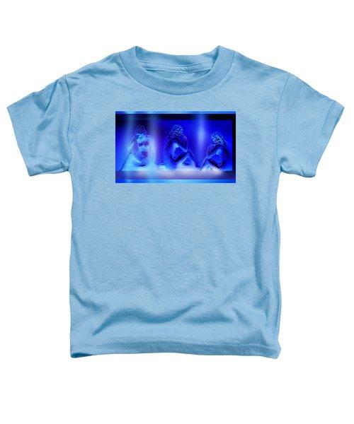 Elusive  Dream Toddler T-Shirt