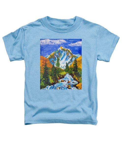 Taylor Canyon Run-off Toddler T-Shirt