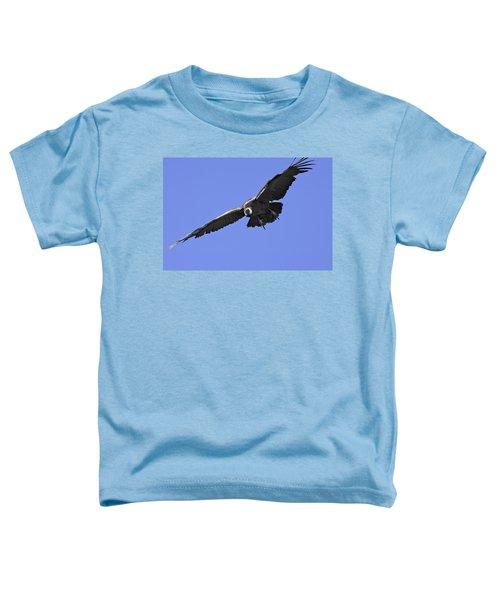 Andean Condor Toddler T-Shirt