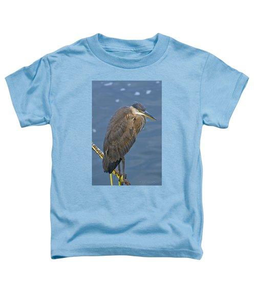 Blue Herron Toddler T-Shirt