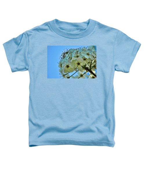 Bradford Pear I Toddler T-Shirt
