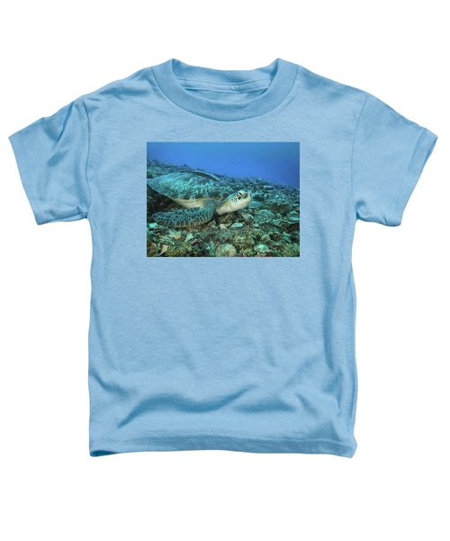 Caretta Resting On Stones Toddler T-Shirt
