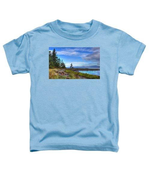 Clearing Skies Toddler T-Shirt