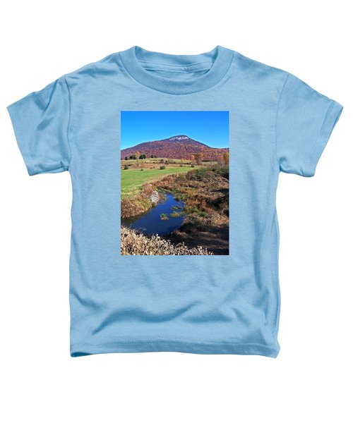 Creek In The Valley Toddler T-Shirt