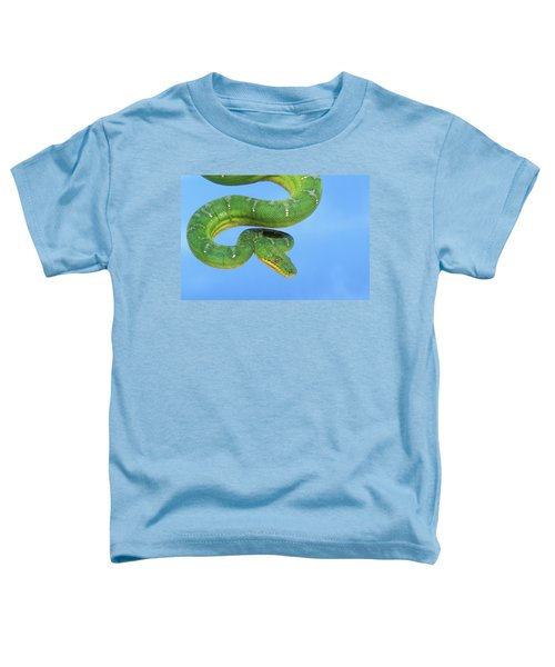 Emerald Tree Boa Corallus Caninus Toddler T-Shirt by Thomas Kitchin & Victoria Hurst